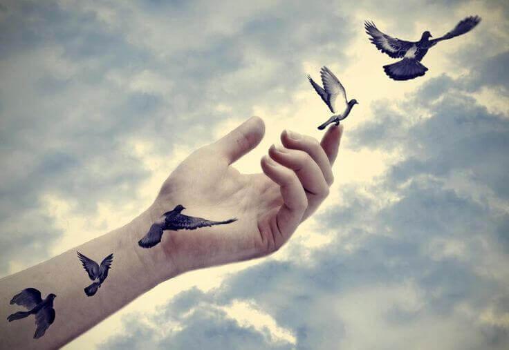 fugler flyr fra hand