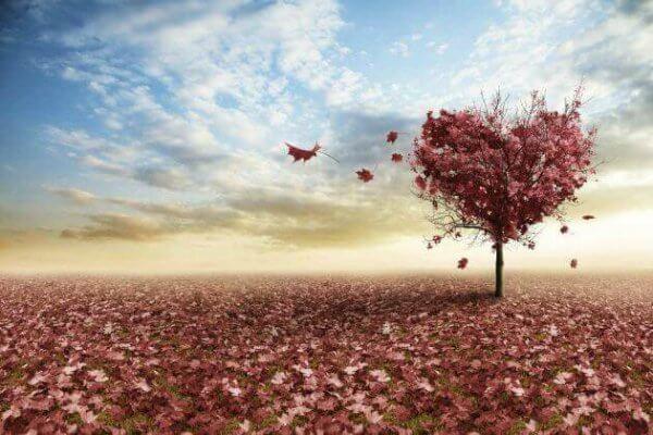 3 refleksjoner over kjærlighet av Erich Fromm