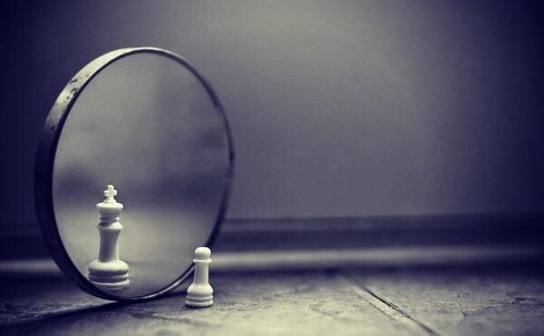 Sjakkbrikke ser i speilet