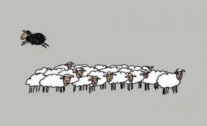 Familiens svarte får