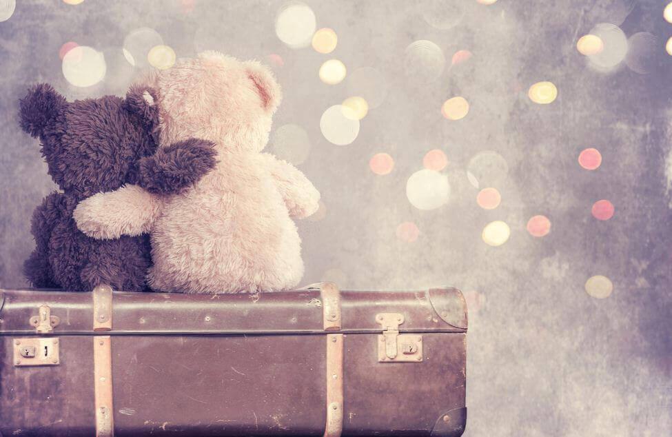 To kosebamser sitter på en koffert