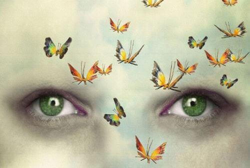 Øyne og sommerfugler