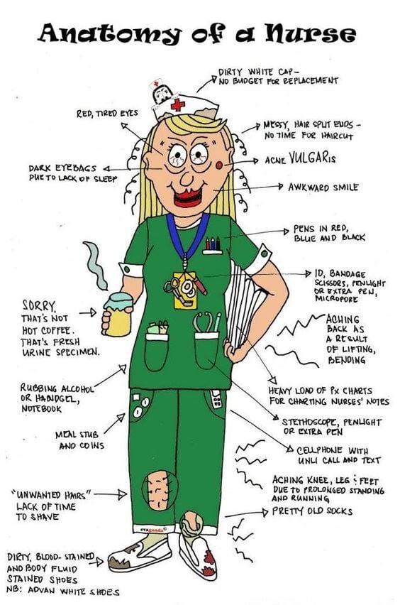 Anatomi av en sykepleier