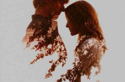 Hvis du skal elske meg, elsk meg vel