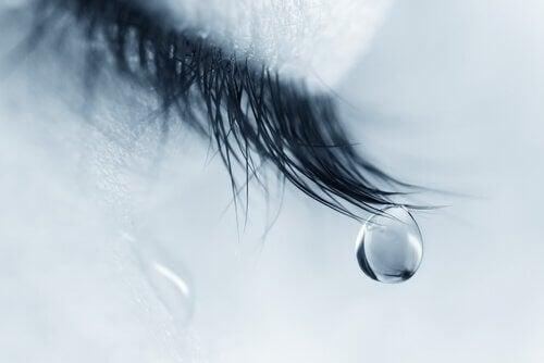 Å finne en avslutning for å begynne igjen - Tårer på øyenvipper