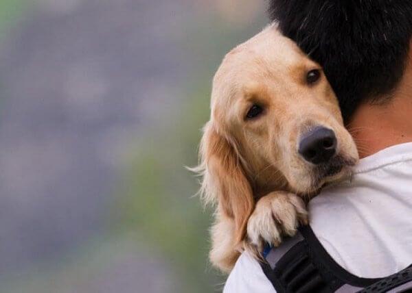 Mann og hund