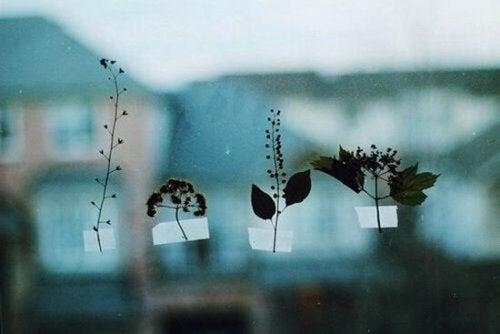 blader teipet til vinduet