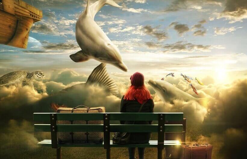 Tilfeldighet eller skjebne - flyvende delfin