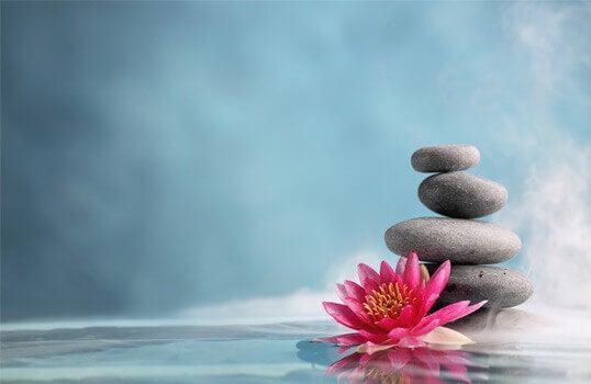 Mindfulness, steiner og en blomst