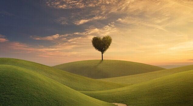 Fredelig eng med hjerteformet tre