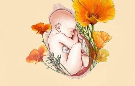 baby i livmor med blomster