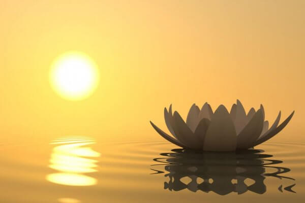 oppmerksomhet, fred og ro