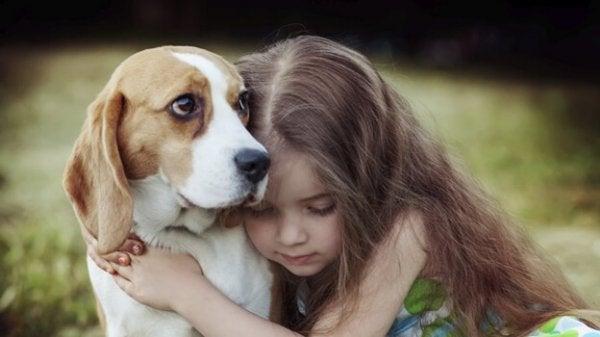 Den helbredende kraften i empati hos hunder