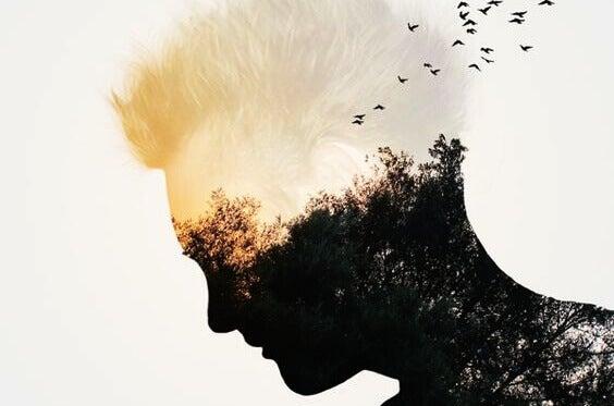 En silhuett av et manns ansikt med fugler i en skog