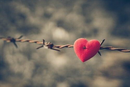 Et såret hjerte er et resultat av å se på partneren din gjennom et forstørrelsesglass