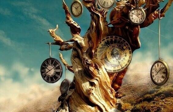 Tre med klokker