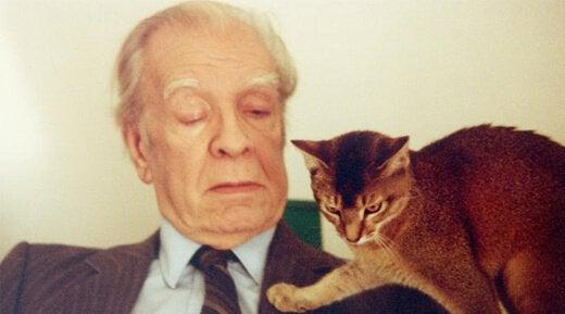 Jorge Luis Borges og katt