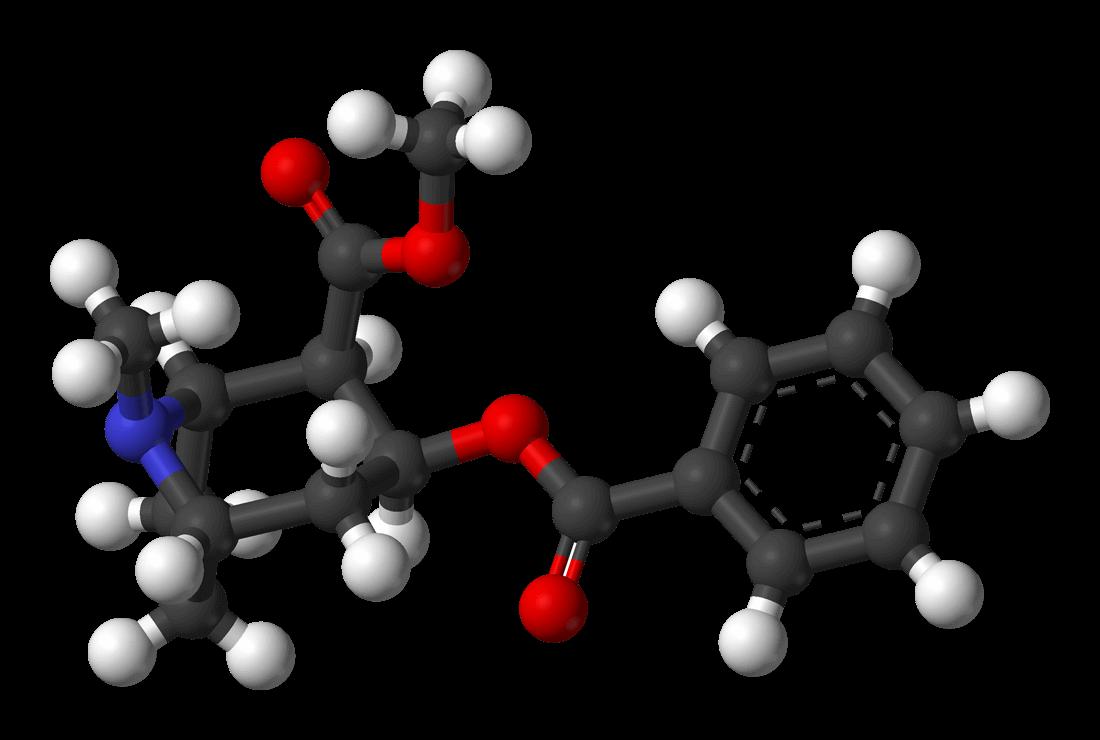 Kokainmolekyl