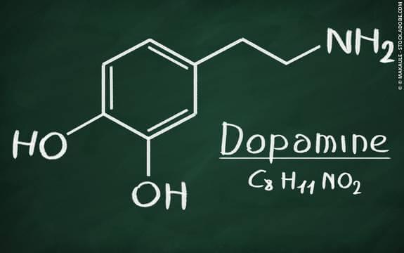 Hva er dopamin og hvilke funksjoner har det?