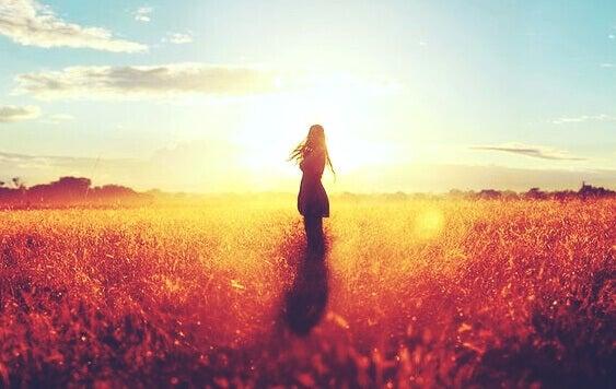 Kvinne uten en familie i solnedgang i en eng