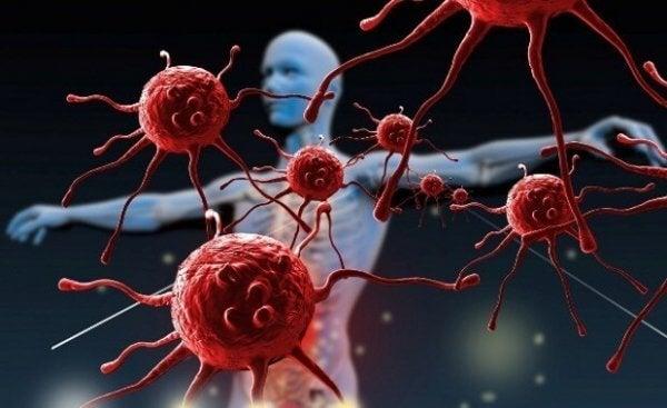 Hvordan kan du styrke immunforsvaret ditt?