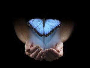 En blå sommerfugl i hender