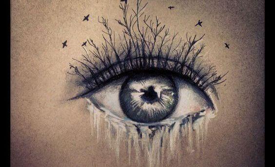 Tårer fra øye med trær som øyevipper