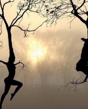 empati gjør våre relasjoner bedre: Trær danser
