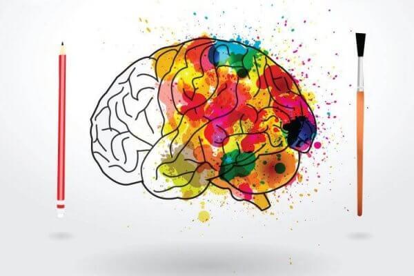 Hjerne fylt med farger