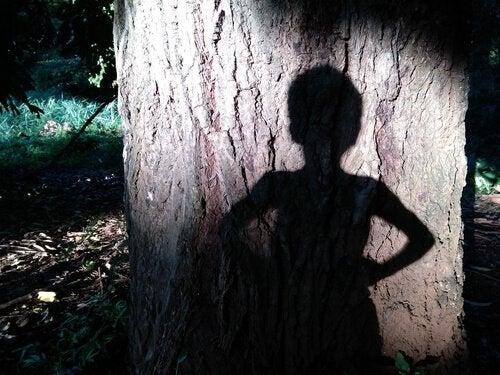 Skygge av en gutt på et tre