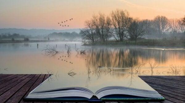 Åpen bok ved innsjø