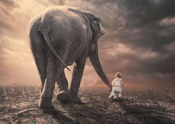 en liten jente og elefant som leier