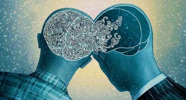 Sammenkoblede hjerner
