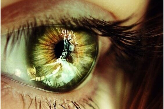 Grønt øye - sjette sans?