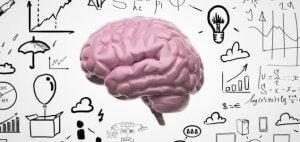 En illustrasjon av en hjerne