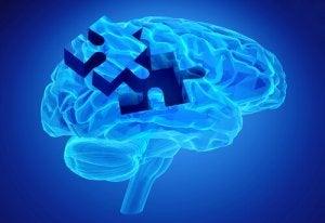 Hjernen passer godt sammen