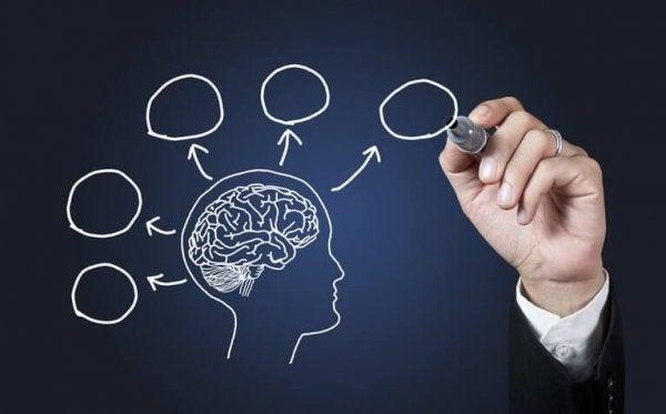 10 grunner til å studere psykologi
