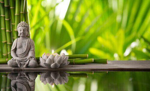 Buddha og lotusblomst