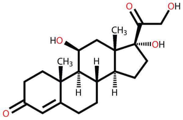 Kortisol, stresshormonet