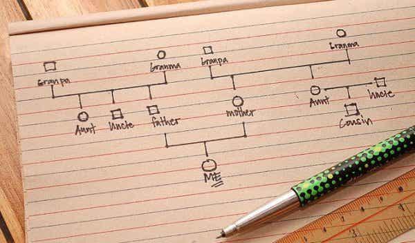 En trinnvis veiledning for å lage et genogram