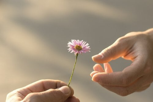 tilgivelse, og tilbyr en blomst