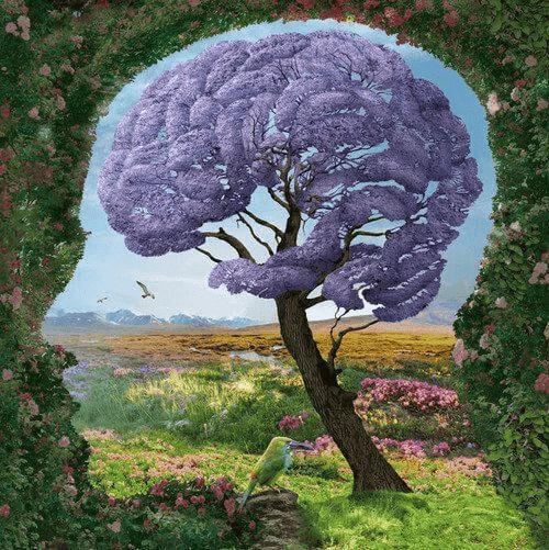 Det limbiske systemet: Hva er det og hvordan fungerer det?