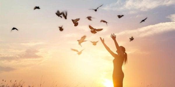 Frigjør fugler til frihet.