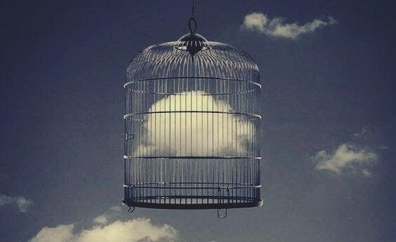 Sky i et bur