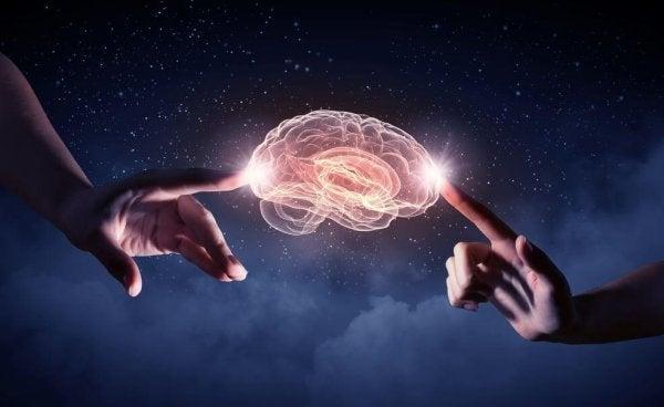 To hender berører en hjerne