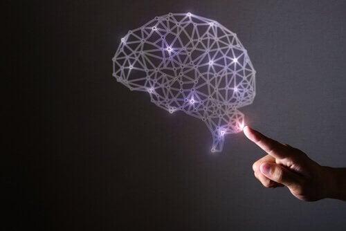 Hjerne med lys