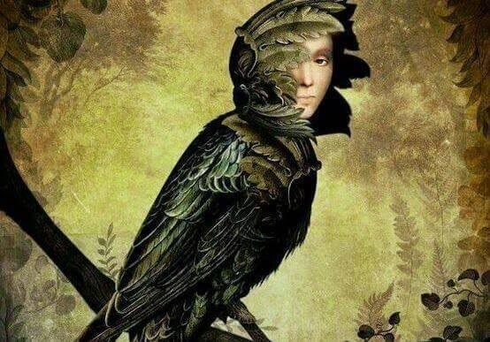 Fugl med kvinneansikt