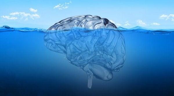 nedsenket hjernen representerer jungiansk terapi