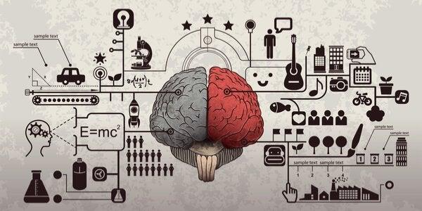 psykologien til reklame og hjernen