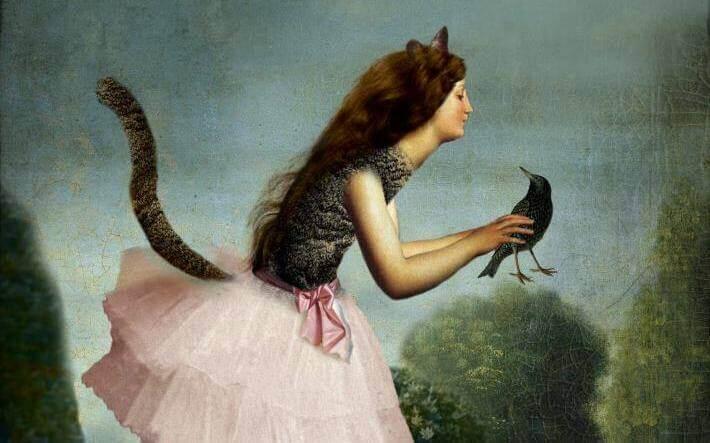 Kattejente med fugl